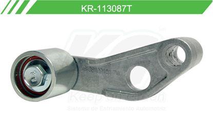 Imagen de Poleas de Accesorios y Distribución KR-113087T