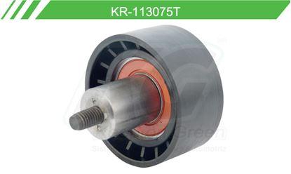 Imagen de Poleas de Accesorios y Distribución KR-113075-T