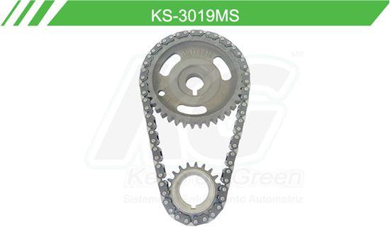 Imagen de Distribución de Cadena KS-3019MS