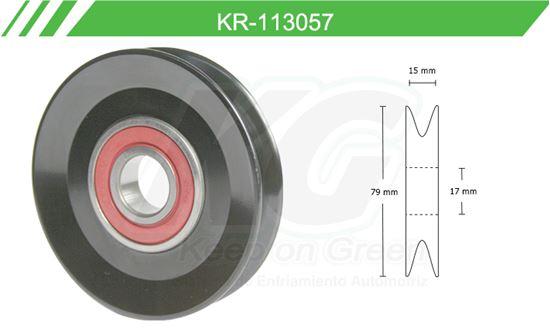 Imagen de Poleas de Accesorios y Distribución KR-113057