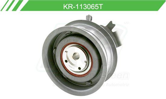 Imagen de Poleas de Accesorios y Distribución KR-113065T