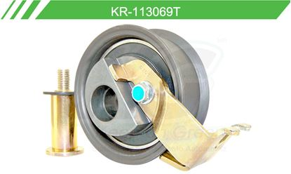Imagen de Poleas de Accesorios y Distribución KR-113069T