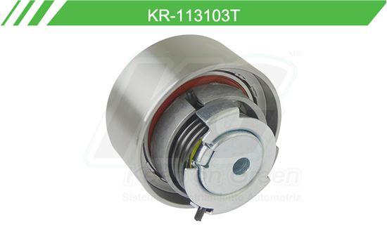Imagen de Poleas de Accesorios y Distribución KR-113103T