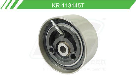 Imagen de Poleas de Accesorios y Distribución KR-113145T