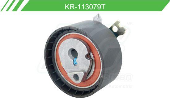 Imagen de Poleas de Accesorios y Distribución KR-113079-T
